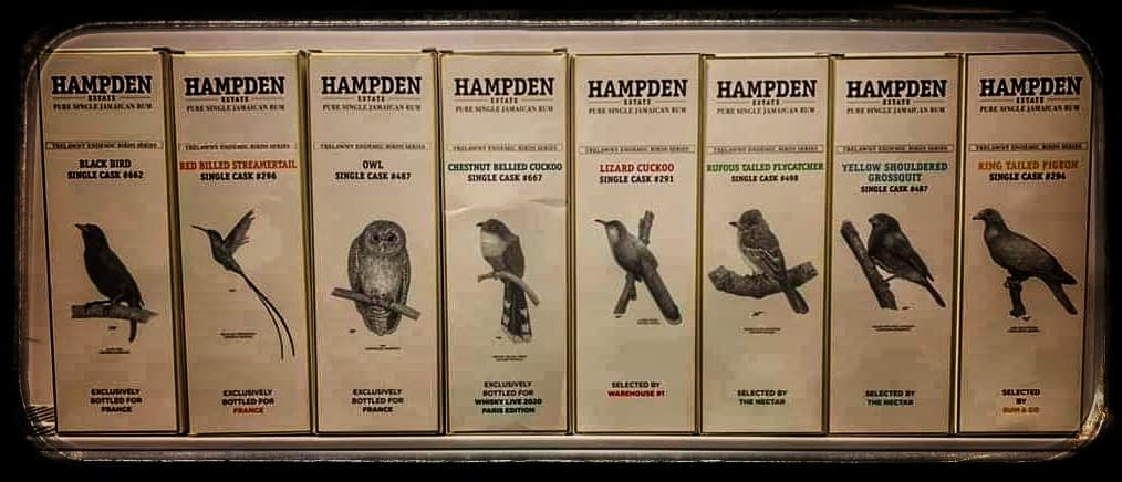 Hampden Estate – Trelawny Endemic Birds Series list