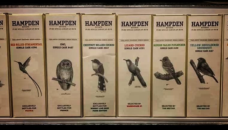 hampden endemic birds rums