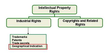 Gi je součást duševního vlastnictví dle WIPO